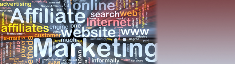 Affiliate Marketing - Internet als Vertriebskanal