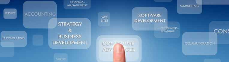 Services and Solutions for Competitive Advantages in Medium-sized Businesses